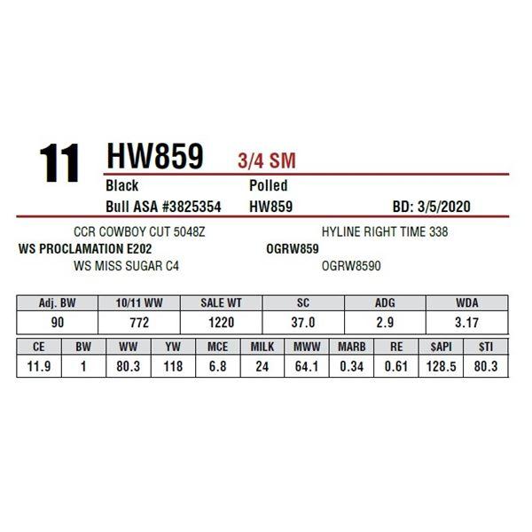 HW859