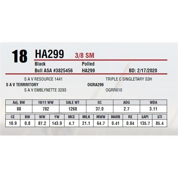 HA299
