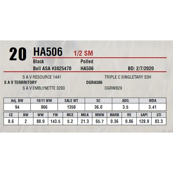 HA506