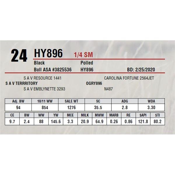 HY896