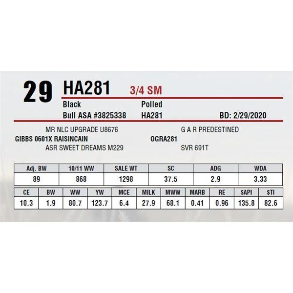 HA281