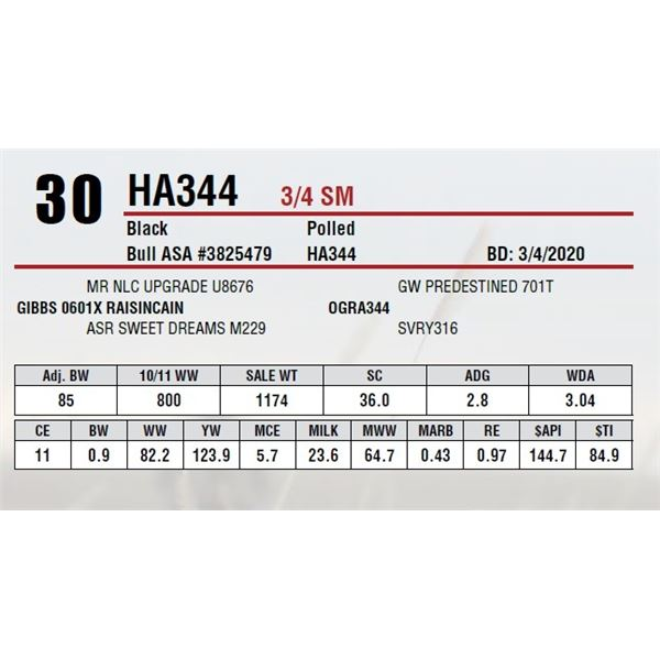HA344