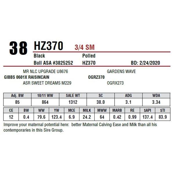 HZ370