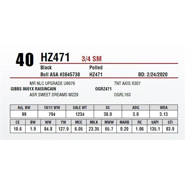 HZ471