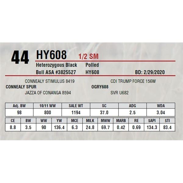 HY608