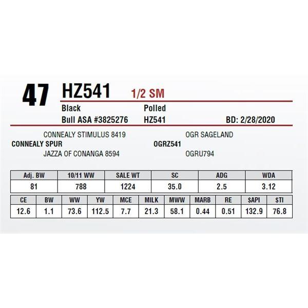 HZ541
