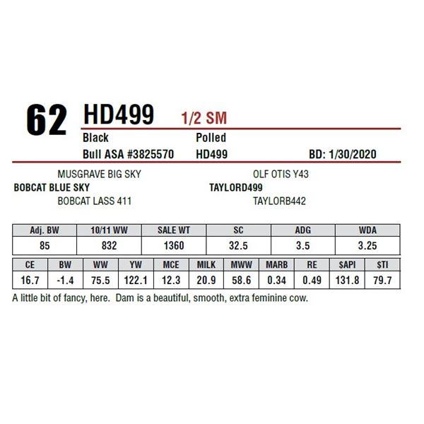 HD499