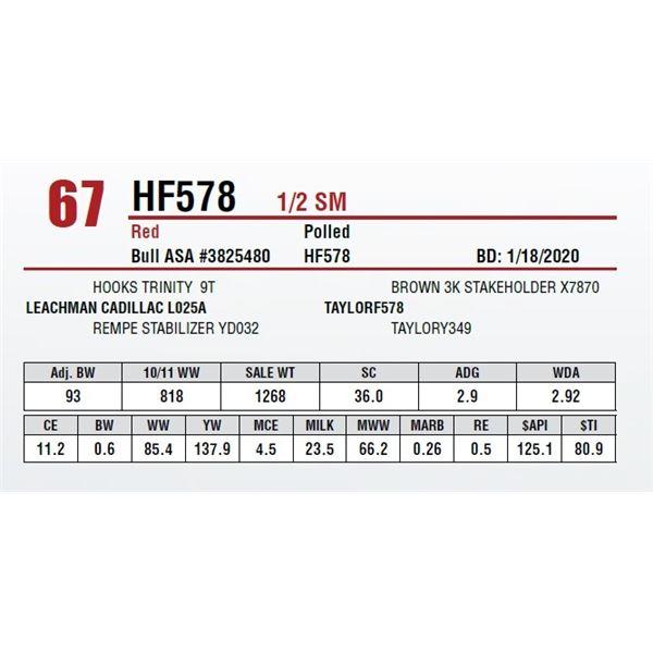 HF578