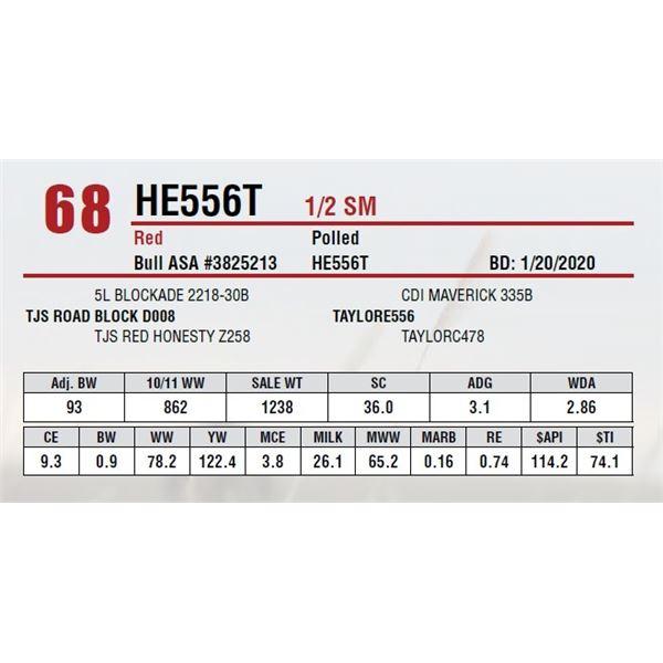 HE556T