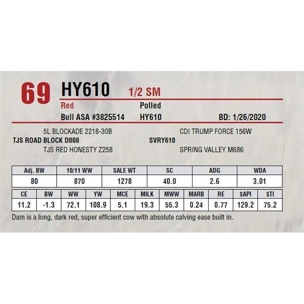 HY610