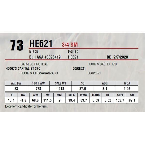 HE621