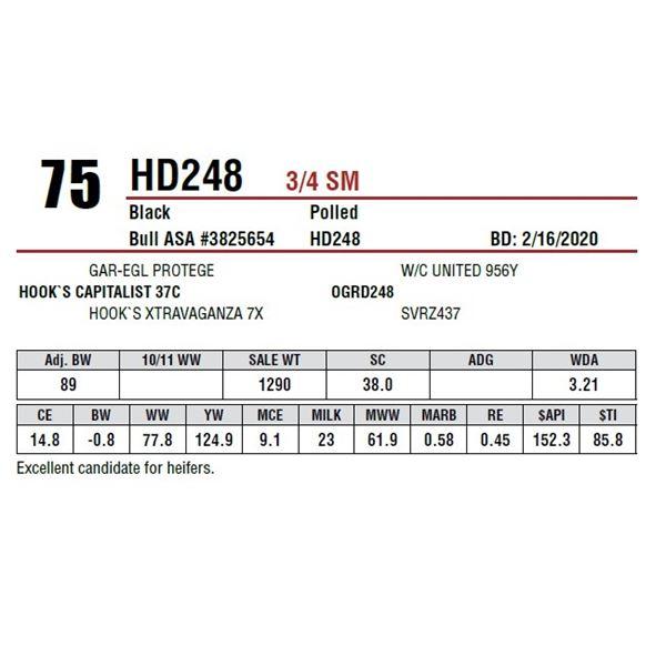 HD248