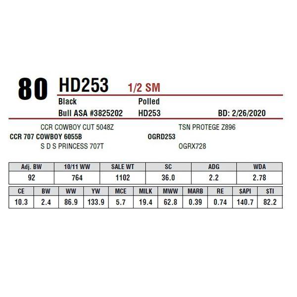HD253