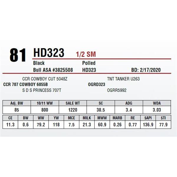 HD323
