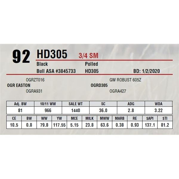HD305