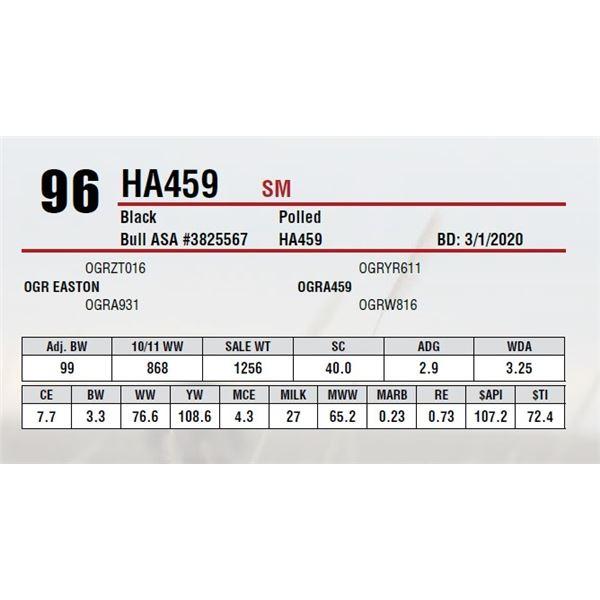 HA459