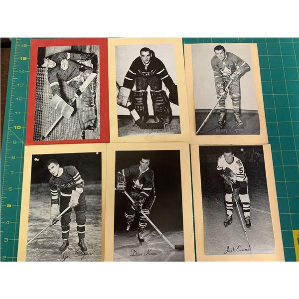 LOT OF BEEHIVE HOCKEY CARD PHOTOS