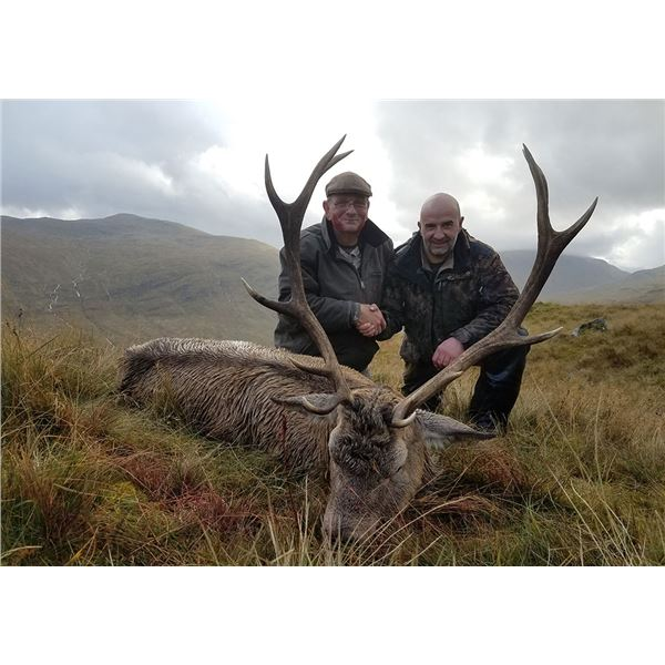 International Adventures Unlimited Red Stag Hunt for 1 Hunter in Scotland inc. Roundtrip Airfare.