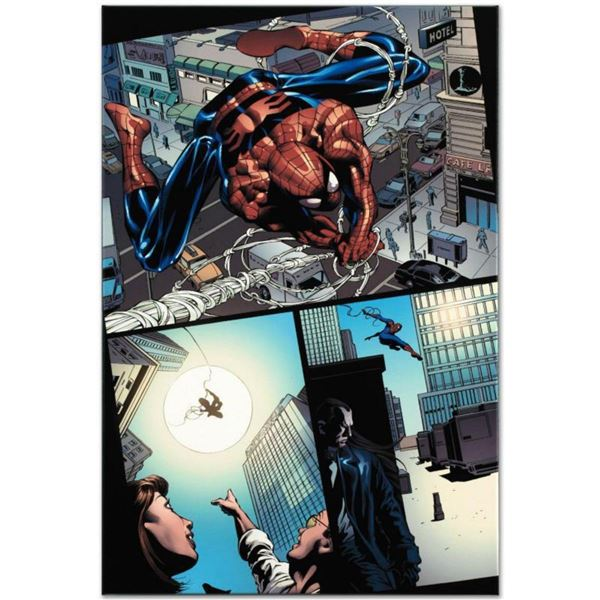"Marvel Comics ""Amazing Spider-Man #526"" Numbered Limited Edition Giclee on Canvas by Mike Deodato Jr"