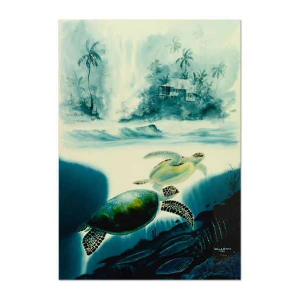 """Wyland & James Coleman, """"Turtle Waters"""" Limited Edition Cibachrome, Numbered and Hand Signed with Ce"""