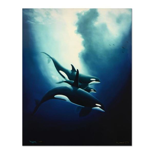 """Wyland, """"Orca Trio"""" Limited Edition Cibachrome, Numbered and Hand Signed with Certificate of Authent"""