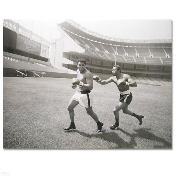 """Licensed Photograph (40"""" x 30"""") of the Heavyweight Champs Muhammad Ali and Ken Norton."""