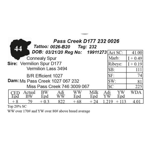 Pass Creek D177 232 0026