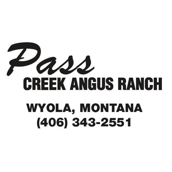 Pass Creek Heifer
