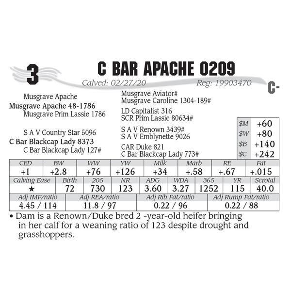 C Bar Apache 0209