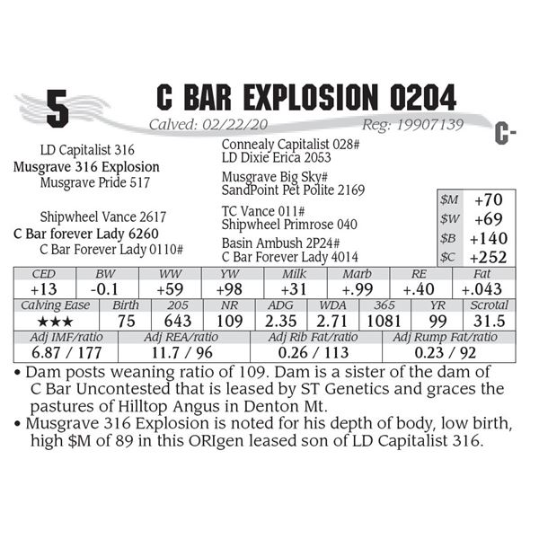 OUT OF SALE - C Bar Explosion 0204