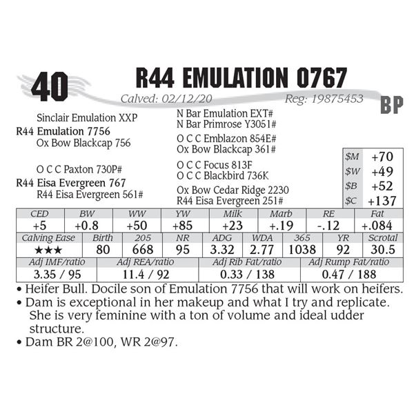 OUT OF SALE - R44 Emulation 0767