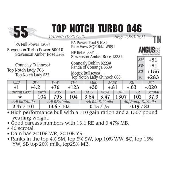 Top Notch Turbo 046