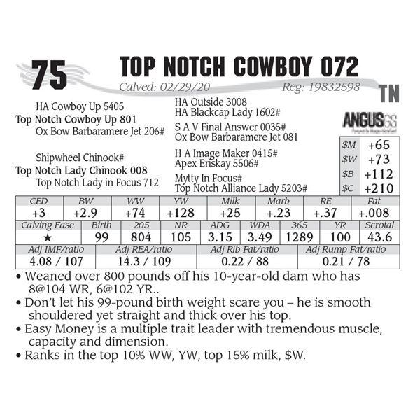 Top Notch Cowboy 072