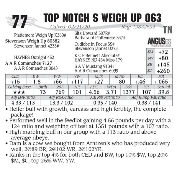 Top Notch S Weigh Up 063