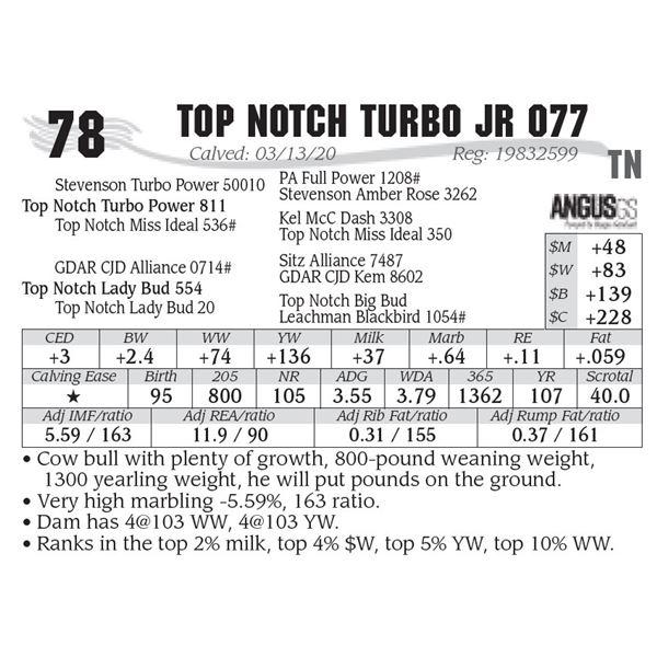 Top Notch Turbo Jr 077
