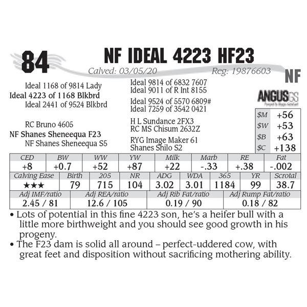 NF Ideal 4223 HF23