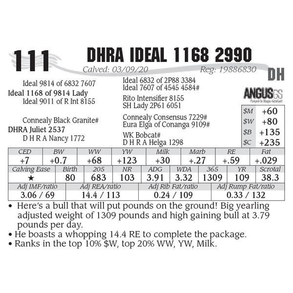 DHRA Ideal 1168 2990