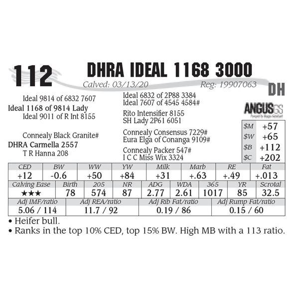 DHRA Ideal 1168 3000