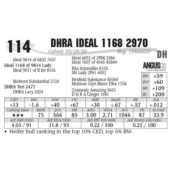 DHRA Ideal 1168 2970
