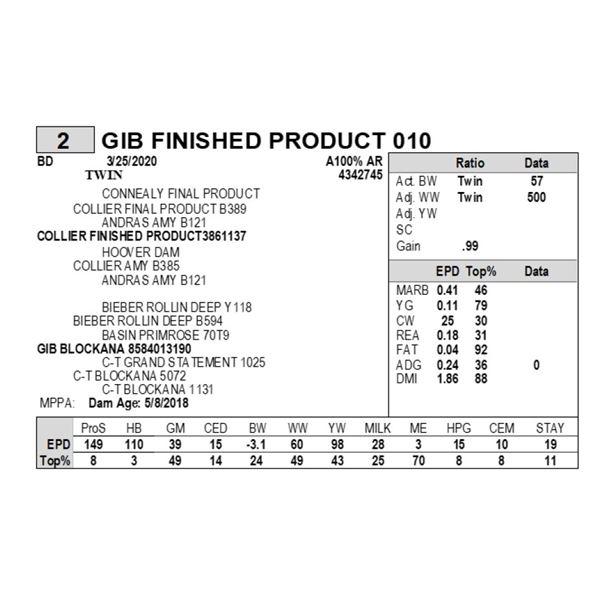 GIB FINISHED PRODUCT 010