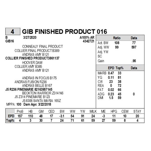 GIB FINISHED PRODUCT 016