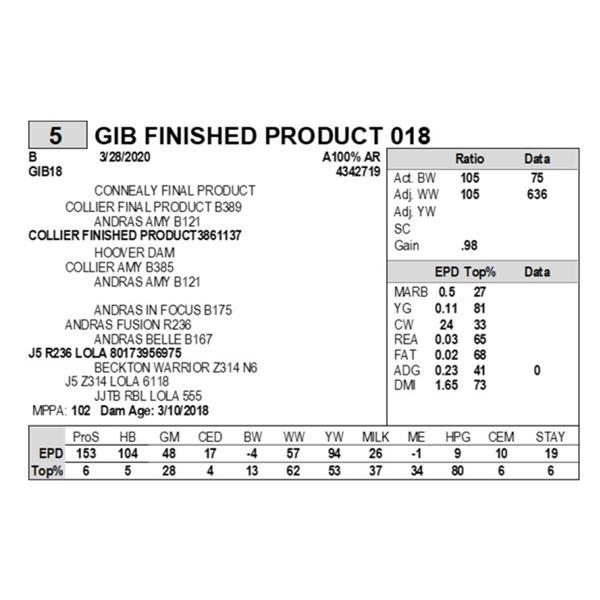 GIB FINISHED PRODUCT 018