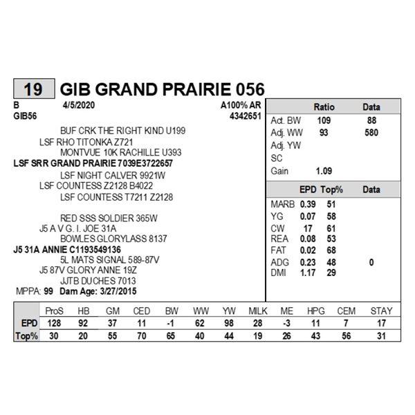 GIB GRAND PRAIRIE 056
