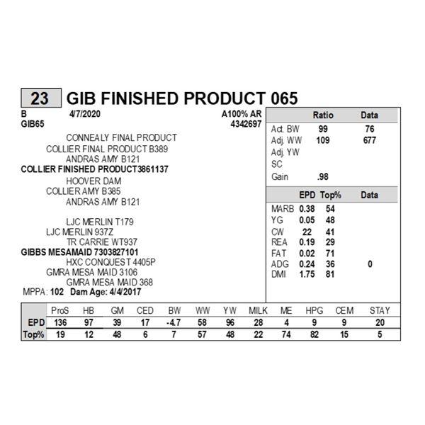 GIB FINISHED PRODUCT 065