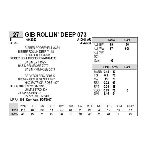 GIB ROLLIN' DEEP 073