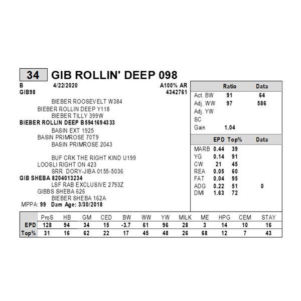 GIB ROLLIN' DEEP 098