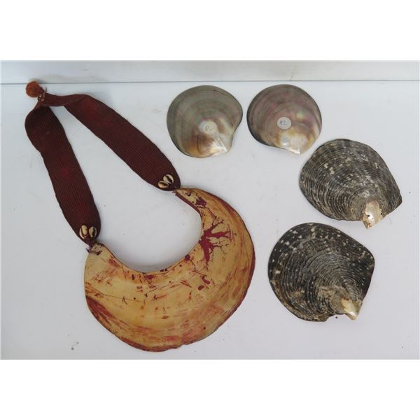 Qty 5 Shells & Necklace, Misc Sizes