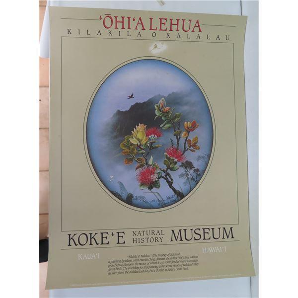 """Ohia Lehua Poster, Kokee Museum 1989 Patrick Ching 18' x 24"""""""