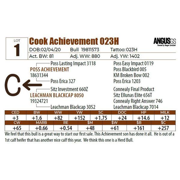 Cook Achievement 023H