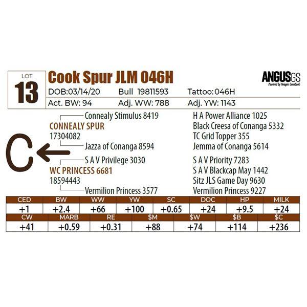 Cook Spur JLM 046H